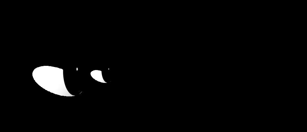 Velo Velefique logo 1.png